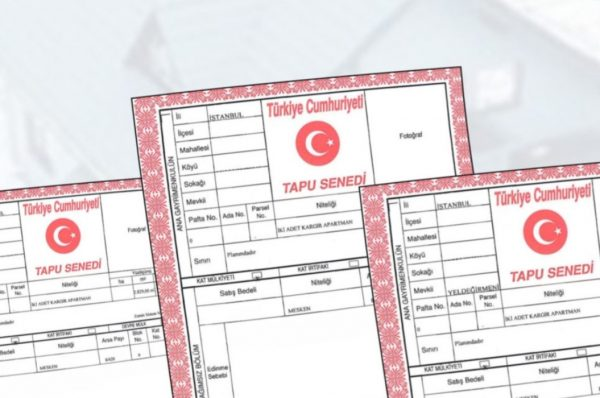 Turkish Citizenship by The Acquisition of Immovable Property